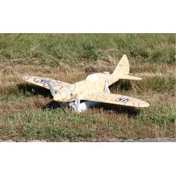 Reggiane Re-2005, 1/12 scale